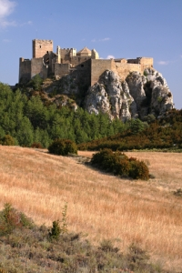 c/o dreamstime.com Castle of Mantovar