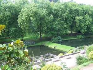 Fishpond from high up on the rear terrace